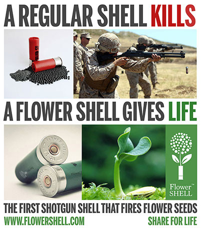 shotgun-flower-shell-10593